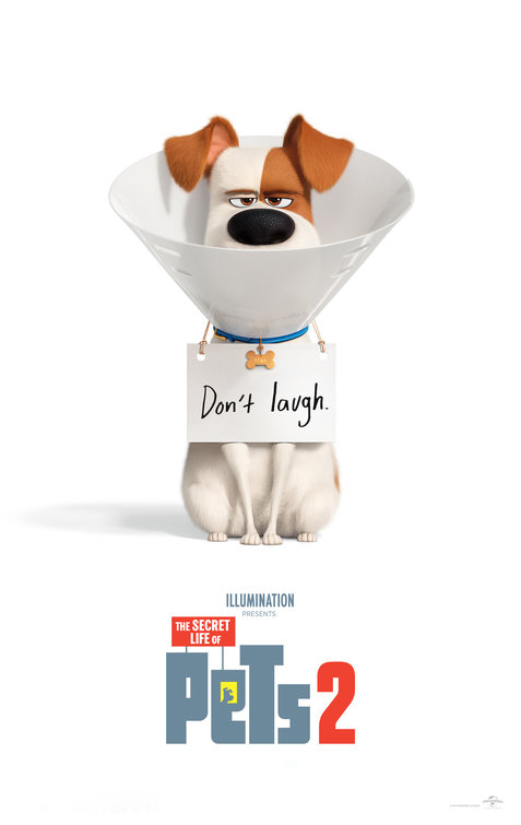 The Secret Life of Pets 2 [2019] [CUSTOM HD] [DVDR] [NTSC] [Latino Final]