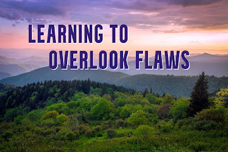 Learning To Overlook Flaws