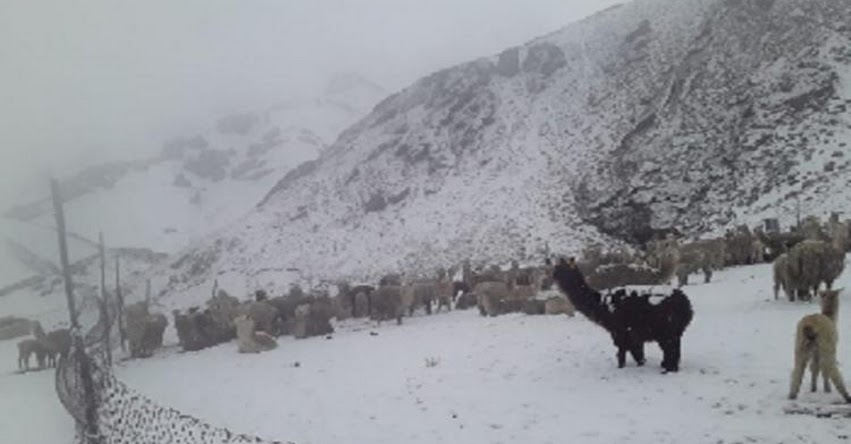 SENAMHI ALERTA: Sierra centro y sur seguirá soportando fuertes lluvias, nieve y granizo - www.senamhi.gob.pe