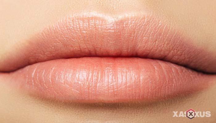 20 Cara Memerahkan Bibir Secara Alami, Cepat, dan Permanen