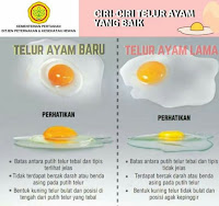 ciri-ciri telur ayam palsu