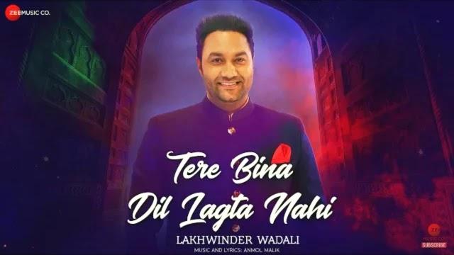 Tere Bina Dil Lagta Nahi Lyrics - Lakhwinder Wadali | Anmol Malik