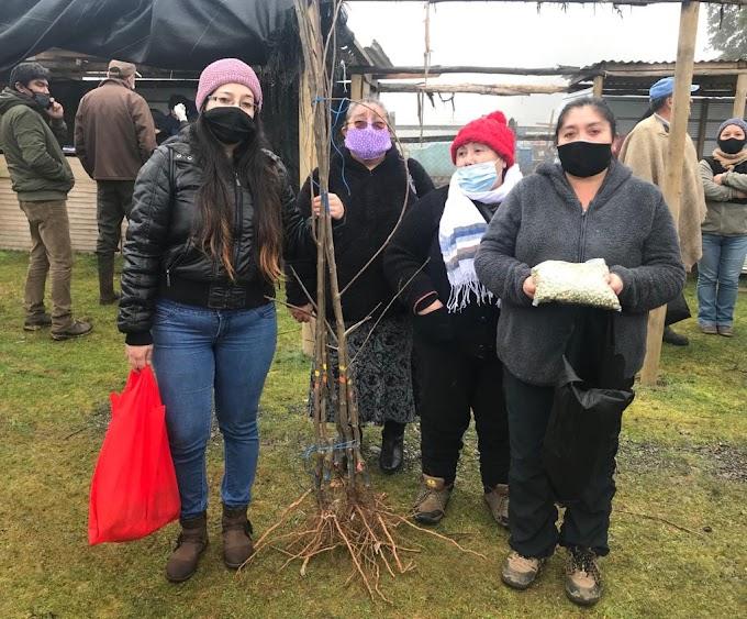 En sector de Forrahue municipio de Osorno continuo entrega de semillas de hortalizas y árboles frutales a pequeños agricultores