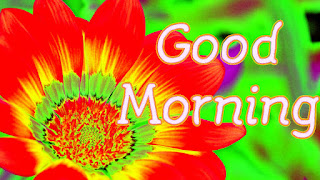 Good Morning Images good