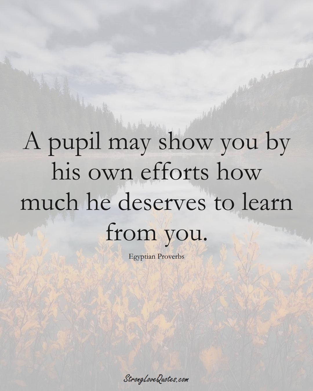 A pupil may show you by his own efforts how much he deserves to learn from you. (Egyptian Sayings);  #MiddleEasternSayings