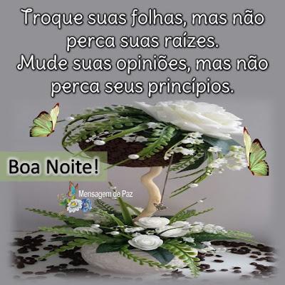 Troque suas folhas,   mas não perca suas raízes.  Mude suas opiniões,   mas não perca seus princípios.  Boa Noite!