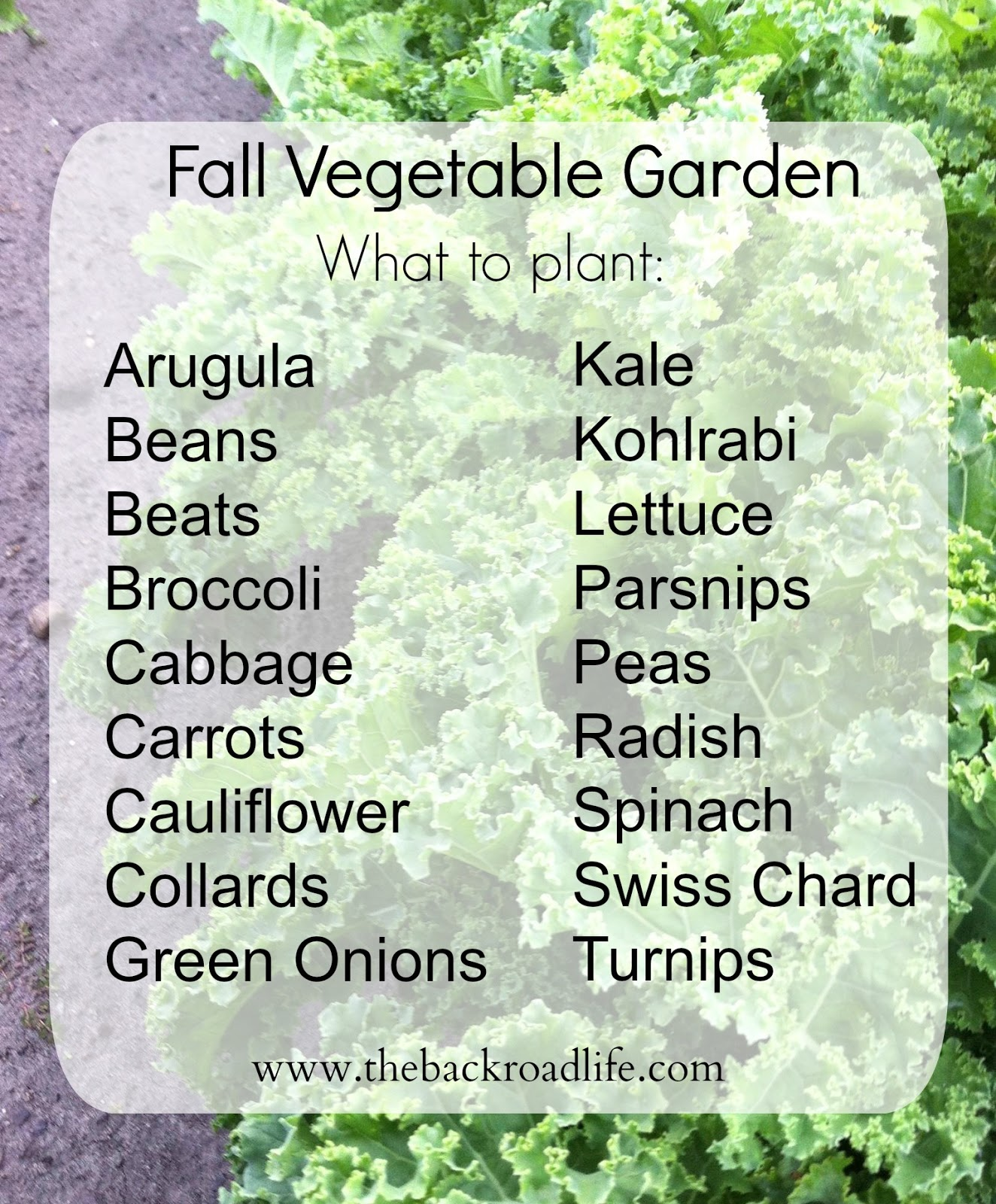 The Backroad Life: Fall Vegetable Garden...when To And