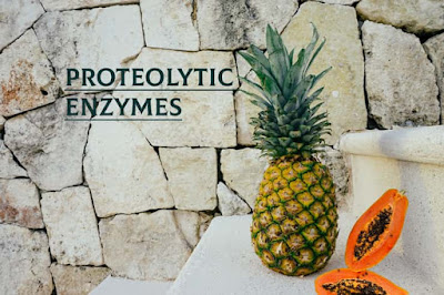 Proteolytic- Enzymes