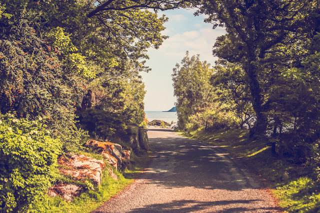coastal path, rockliffe, kippford, mandy charlton