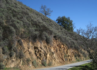 Hillside along Calaveras Road, Santa Clara County, California