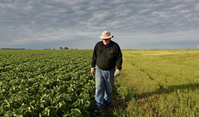 Why farmers will never abandon President Trump