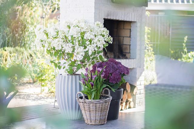Deko-Ideen und Tipps für Hortensien | Lieblinge und Inspirationen der Woche | Personal Lifestyle, DIY and Interior Blog | Auf der Mammiladen-Seite des Lebens