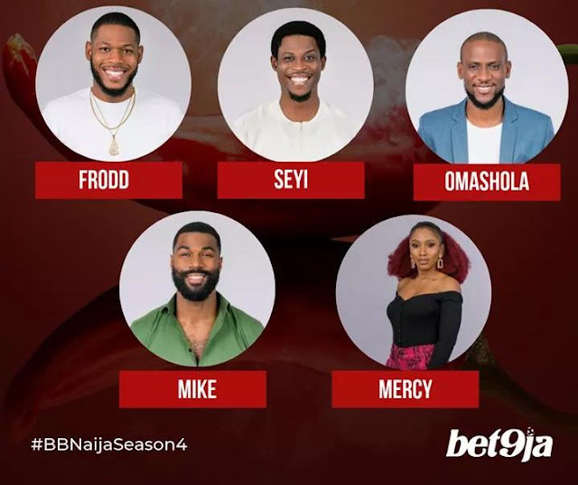 #BBNaija 2019: Here are finalists of Big Brother as Diane gets surprise eviction