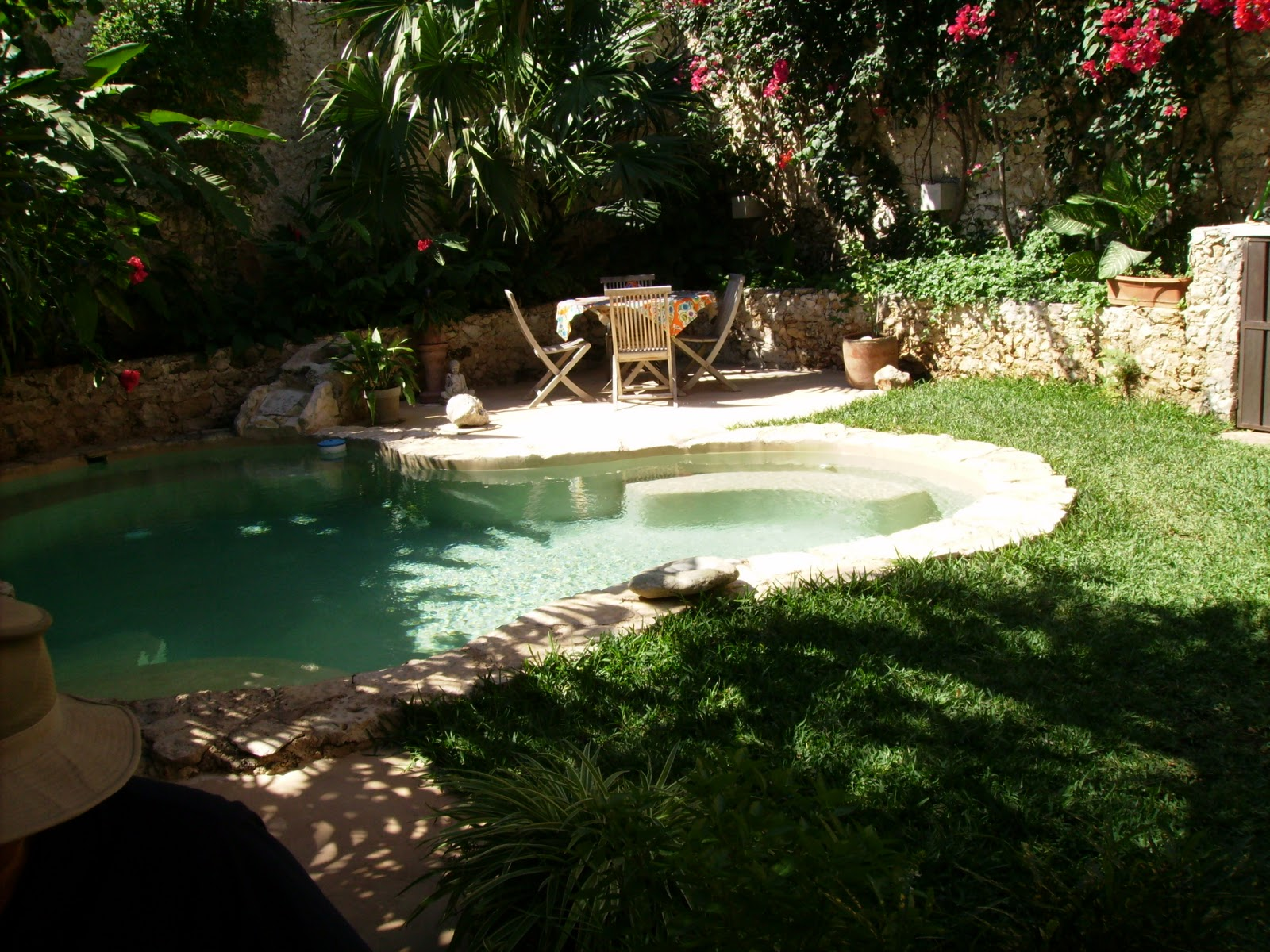 My View from Merida: Nice backyard pool- nope it's not mine!