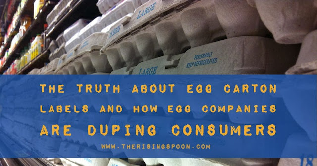 Why You Should Only Eat Pastured Eggs + Unraveling the Real Meanings Behind Egg Carton Labels | www.therisingspoon.com