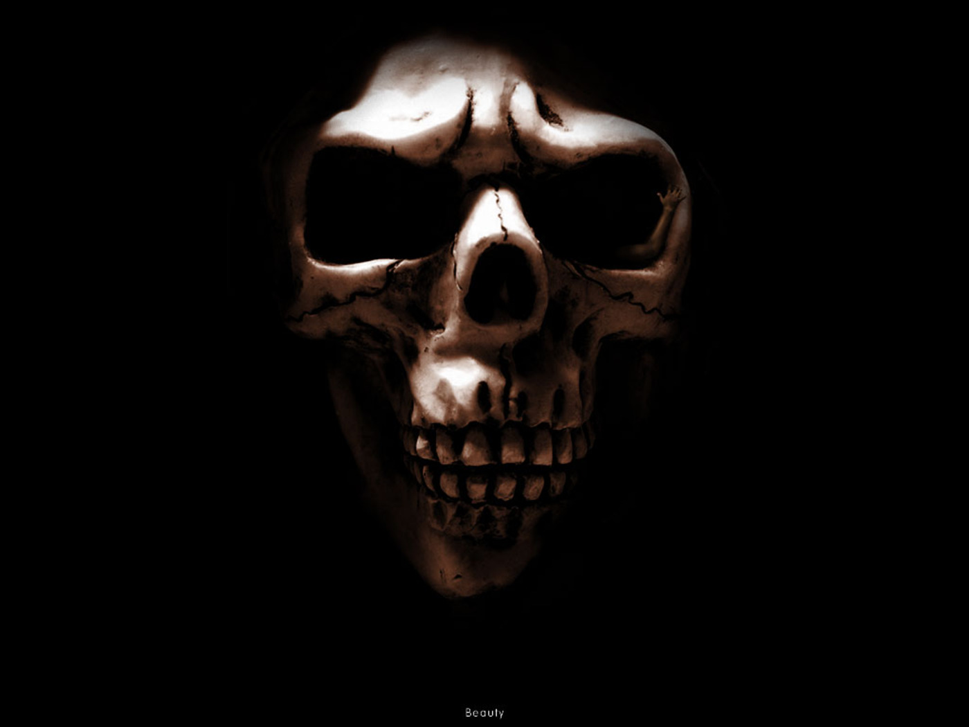 Skull Wallpapers - Wallpapers