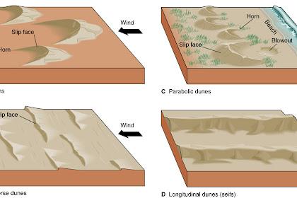 Pengertian dan Jenis-Jenis Sedimentasi, Lengkap Gambar dan Penjelasan