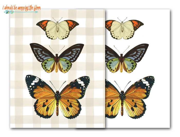 Free Butterfly Printable Art