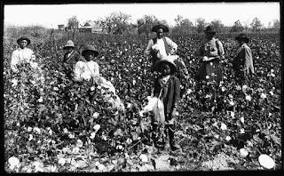 Familia negra recolectora de algodón (circa 1890)