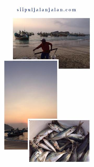 Pesona Pantai Papuma yang Bikin Gagal Move On