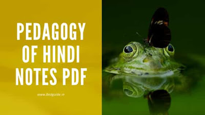 Hindi Pedagogy Notes For B.ed PDF