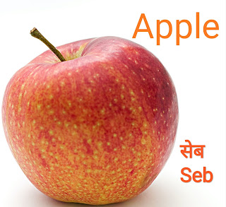Fruits name in hindi