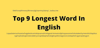 Top 9 Longest Word In English, Longest Word In English, Longest Word In English in english language,what is the  Longest Word In English language,what is  Longest Word In English, Longest Word In English in dictionary, Longest Word In English dictionary, Longest Word In English dictionary, Longest Word In English pronunciation, Longest Word In English in the world,