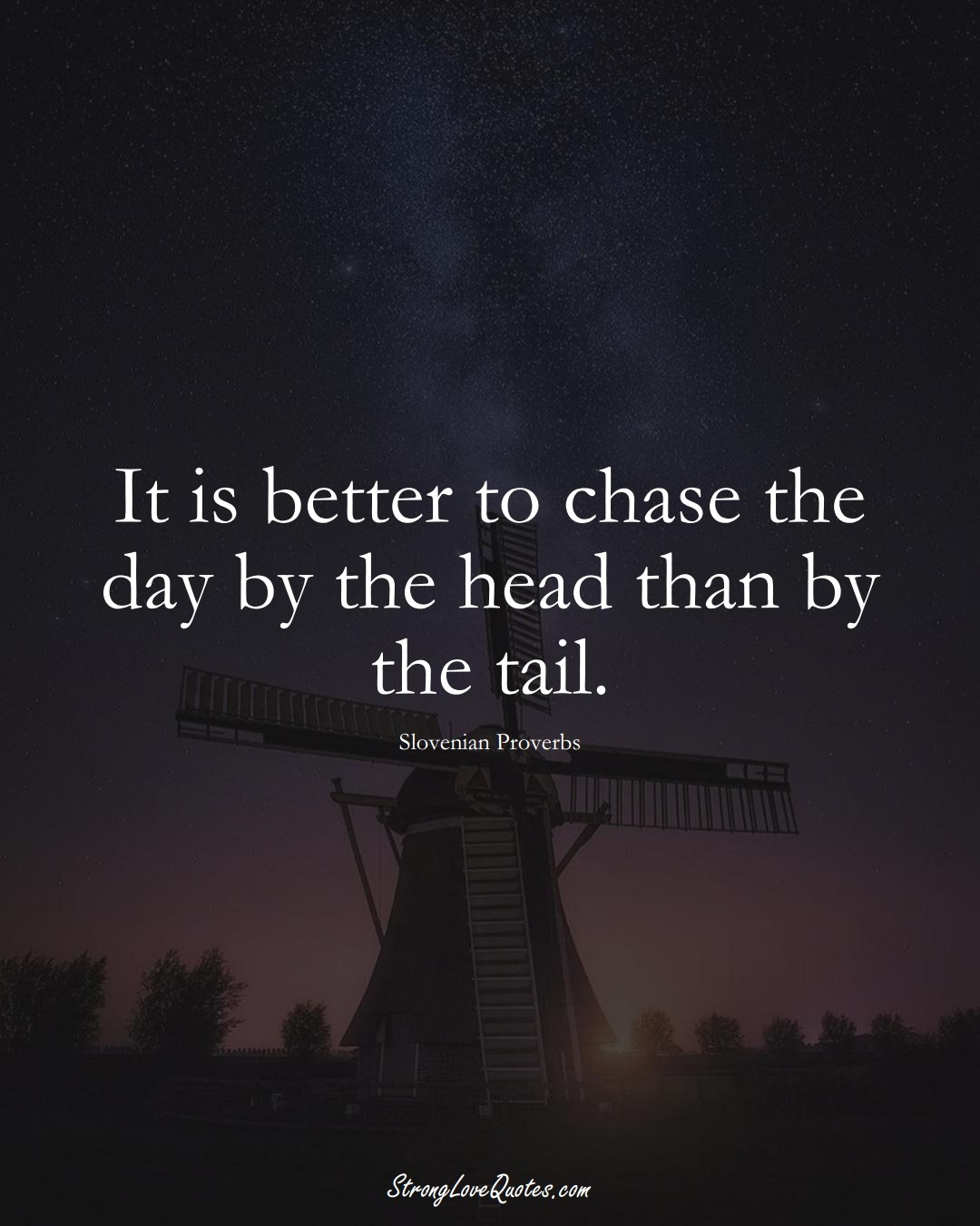 It is better to chase the day by the head than by the tail. (Slovenian Sayings);  #EuropeanSayings