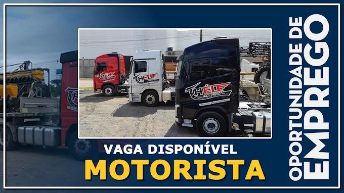 THÉO TRANSPORTES ABRE VAGAS PARA MOTORISTA TRUCK
