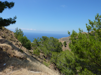 Paphos Forest, Cyprus