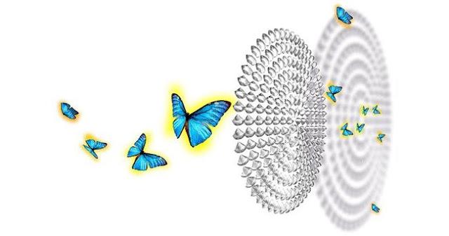 Liquid crystal microlenses capture 4D images