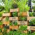 Vertical Garden, Solusi Taman untuk Keterbatasan Lahan