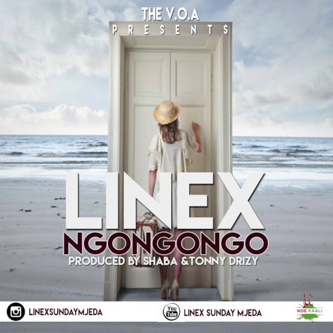 AUDIO | Linex - NGONGONGO | Download