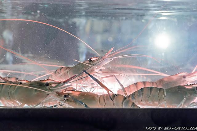 MG 9737 - 熱血採訪│台中第1間泰國流水蝦就在泰夯蝦!全台首創18米玻璃透明LED水道,還有熟食沙拉熱炒海鮮時蔬甜點冰淇淋吃到飽