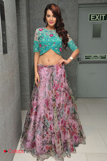 Deeksha Panth  Picture Gallery at Chal Chal Gurram Audio Release ~ Celebs Next