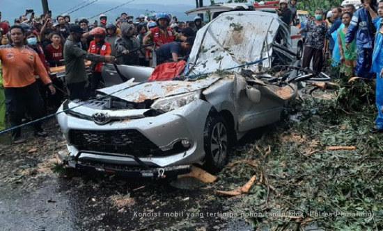 Tragis, Mobil Tertimpa Pohon Randu di Randudongkal, Empat Orang Meninggal Dunia
