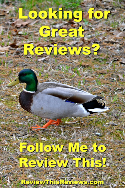 A quick view Home page where you can see featured Reviews at a glance on Review This!