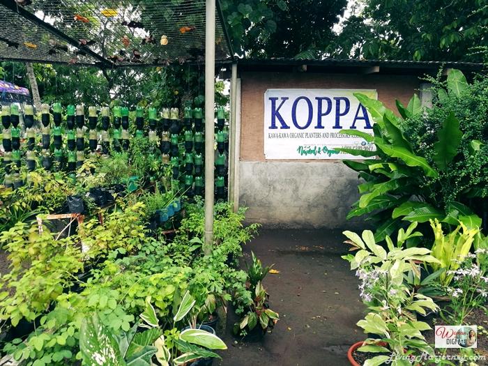 LivingMarjorney-KOPPA-Farm