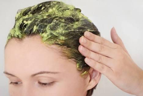 Shampooing et revitalisant aux noyaux d'avocat : cheveux plus longs et moins de chute de cheveux