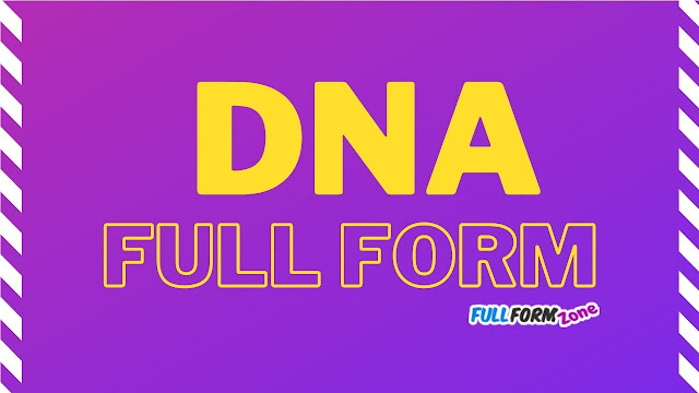 dna full forms