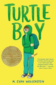 Turtle Boy by M. Evan Wolkenstein