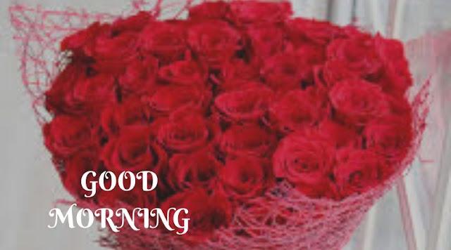 Good Morning Love Rose Images For Girlfriend