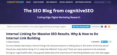 Learn SEO at Cognitive SEO