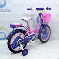 16 rmb paris kids bike