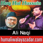 http://www.humaliwalayazadar.com/2017/09/ali-naqi-nohay-2018.html