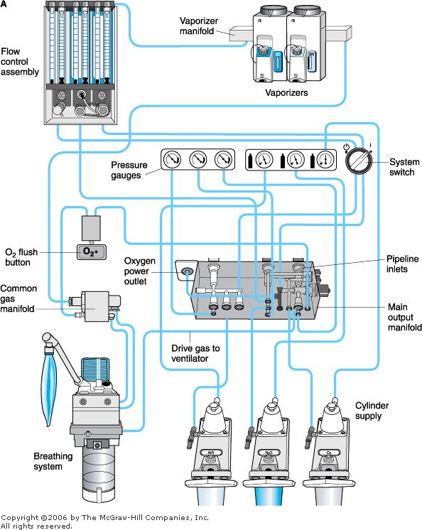 Eternity anesthesia machines schematic picture diagram bagan schematic picture diagram bagan anesthesia machines mesin anestesi ccuart Images