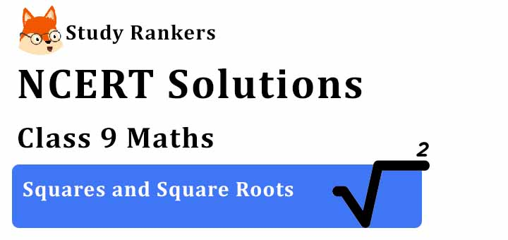 NCERT Solutions for Class 8 Maths Chapter 6 Squares and Square Roots