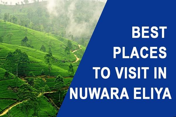 best places to visit in Nuwara Eliya