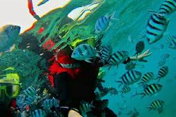Apa Yang Menarik di Pulau Kapas, 7 Aktiviti Best di Pulau Kapas