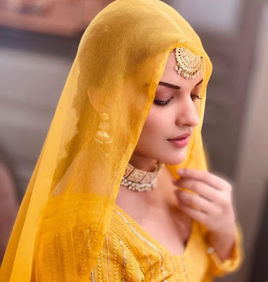 Himanshi khurana Wiki Biography, Song, Music Video, Movies, Photos Age, Height, Affairs  and other Details